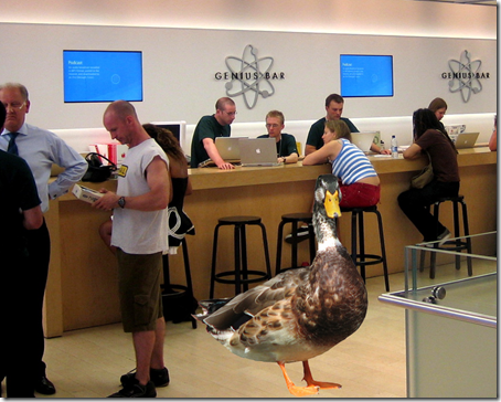 A duck walks into an Apple Genius Bar