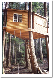 Tree House by Roderick Romero of Romero Studios