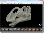 Brock Sisson - Fossil Skull Model in Project Photofly