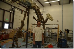Brock Sisson with a dinosaur exhibit under construction