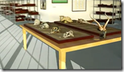 Welcome to the AfricanFossils.org Lab