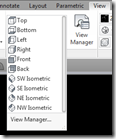 AutoCAD Ribbon's View Panel