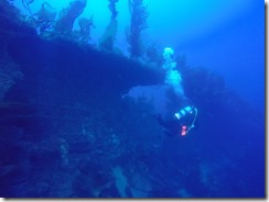 Diving a Shipwreck