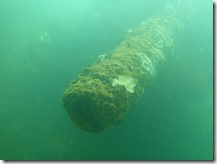Capturing the USS Arizona in 3D Project - One of the Big Guns