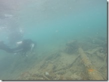 Capturing the USS Arizona in 3D Project - Diver swimming above the deck