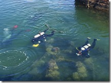 Team Divers on the USS Arizona