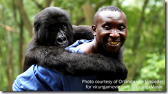 The Virunga Movie