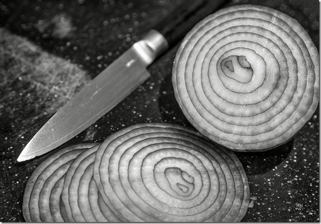 Onion Layer Image credit Robert Couse-Baker on Flickr