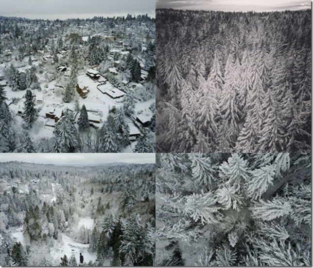 Portland Winter Wonderland