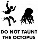 Dont Taunt the Team OCTO