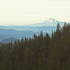 You can see Mt Adams in the distance.
