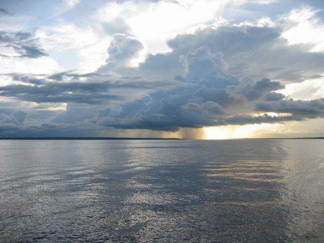 Rio Negro River in the Amazon Jungle